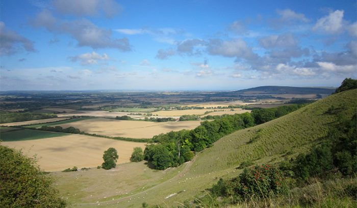 South Downs Sussex National Park