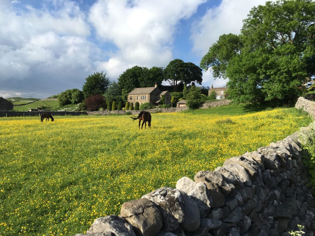 Near Grassington