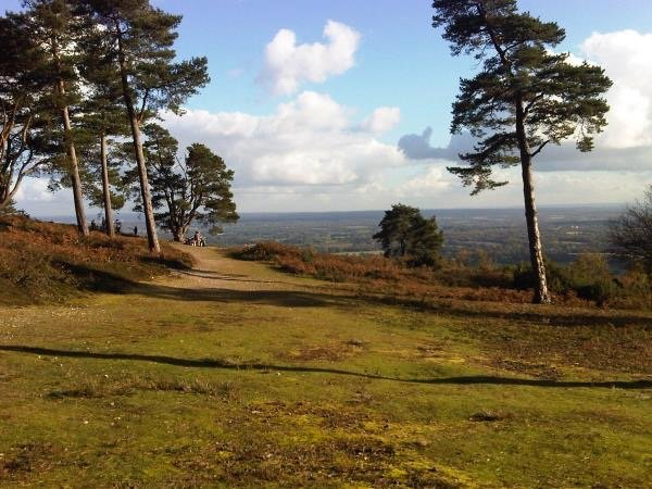 The Heart of the Surrey Hills